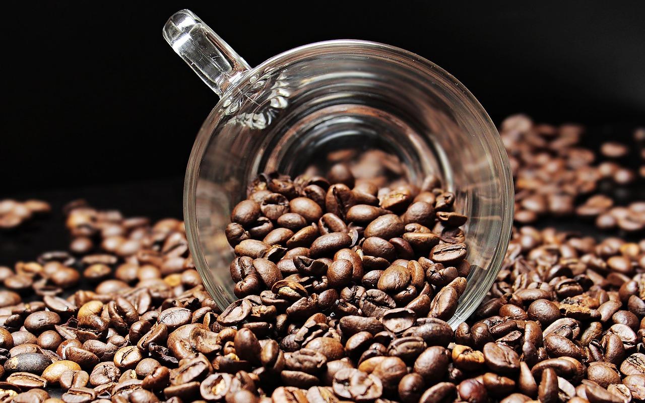 Splendid kawa. Jak uzyskać doskonałą kawę?
